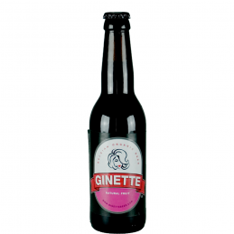 Ginette Fruit 33 cl